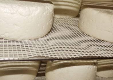 Étagère contenant du fromage de chèvre à la chèvrerie du refuge du Grenaironà la chévrerie du refuge du grenairon