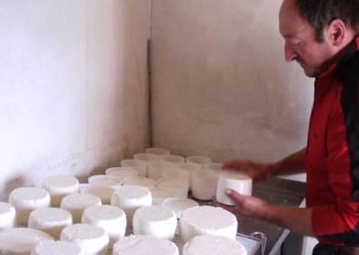 chevrier travaillant le fromage de chèvre à la chèvrerie du refuge du Grenairon